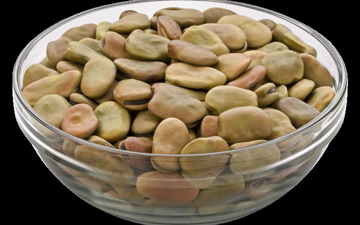 beans in Arabic